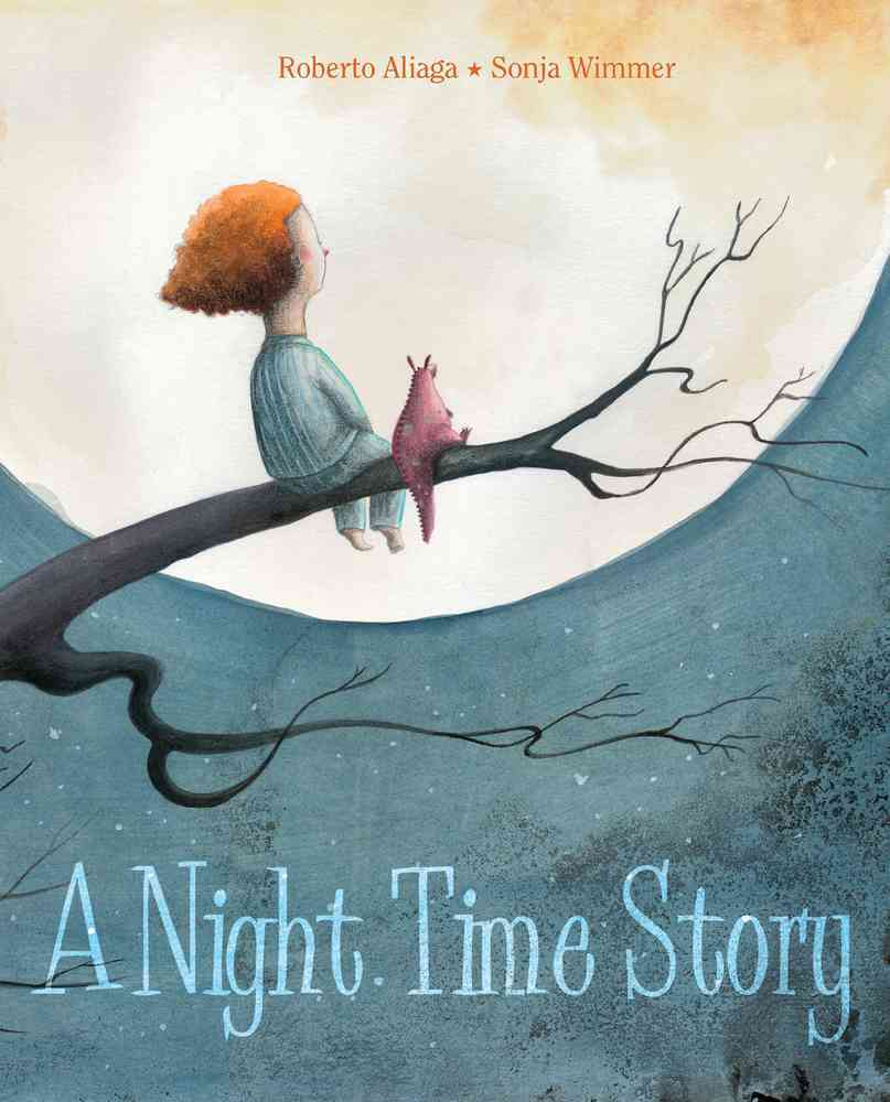 A Night Time Story By Aliaga, Roberto/ Wimmer, Sonja (ILT)